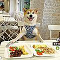 豐宇義式廚房-親子寵物友善餐廳