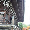 2007京都遊走D4