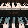 我的古董琴YAMAHA FS-30