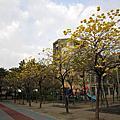 鳳山黃埔公園103.2.18