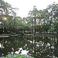 104.10.1鳳山百榕湖