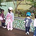 阿妞與好朋友的動物園之旅