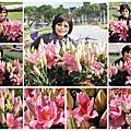 2014.1.7台北花卉展