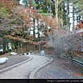 2012.11.19福壽山農場賞櫻