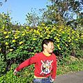 2013/11/30  竹東河濱公園