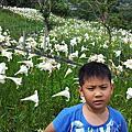 2014/5/24  白石吊橋+百合