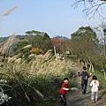 2016/6/7  苗栗:十份崠古道+出關步道(來回7公里)