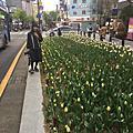 2018/4/4  大邱:東城鬧區逛街