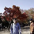 2018/11/4 慶洲~佛國寺 賞楓