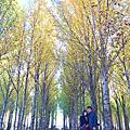 2019/10/3 四川
