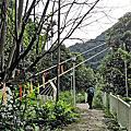 2021/08/11-08/14 谷關七雄(4座)