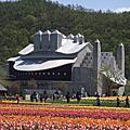牛-北海道