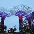 新加坡自由行DAY1