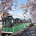 2014春。日本。京都