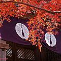 2014秋。日本。京都