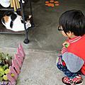106.02.06猴硐貓村