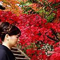 京都紅葉季節的和服選擇