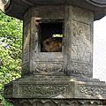200806日本寺廟巡禮
