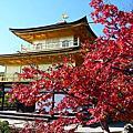 京都‧紅葉