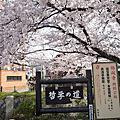20110410 京都哲學之道--南禪寺