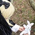 秋之童話--羅莎,兔子妖精
