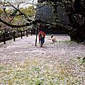2016-04-北九州-DAY3