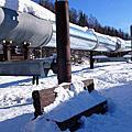 阿拉斯加, Farebanks - 大油管 地形勘察