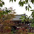 宇治川 平等院 宇治神社