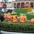 迪士尼-land