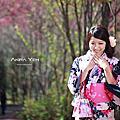 [旅遊.人像]2012 武陵櫻花季 - 櫻花美人