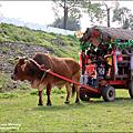 鄉村田園的體驗之旅-文山休閒農場