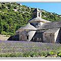 2011義法之旅Day9~賽農克聖母修道院Abbaye Notre-Dame de Senanque