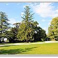 2011義法之旅Day11~岩石公園Rocher des Doms