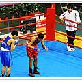 101全國中等學校運動會Day6~木球、軟網、拳擊