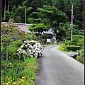 2015暑假日本大阪京都自由行