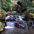 三峽雲森瀑布_20070331