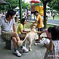 台中美國國慶園遊會