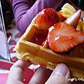2010大湖採草莓巧遇小貓