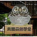 20140427-2 桃園市-虎頭山公園-奧爾森林學堂