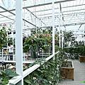 20141026-2 宜蘭縣冬山鄉-香草菲菲芳香植物博物館