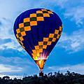 20160820「青青草原放暑假」熱氣球體驗活動