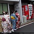 京阪的爛漫
