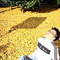 日本‧2010東京京都蜜月行/1127
