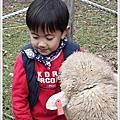 2012-01-01清靜跨年(青青草原露營)
