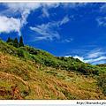 2012-07-21拉拉山雲頂