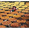 2012-10-14新竹新埔味衛佳柿餅