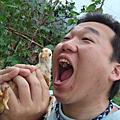 宜蘭財哥山野桶仔雞食記