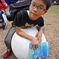20131018 台灣動物昆蟲創意展