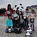 20140328 烈陽下的黑白紙熊貓