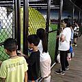 中年級討論寒假台中旅行、陸地上蛇類、京華城泡泡足球